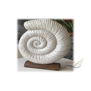 Caracol Decorativo